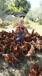 estelle et les poules